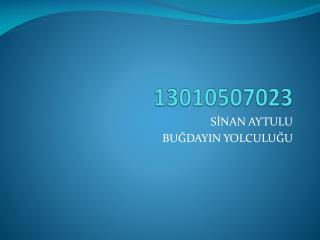13010507023