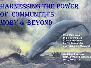 Harnessing the Power  Of  communities: MOBY & Beyond