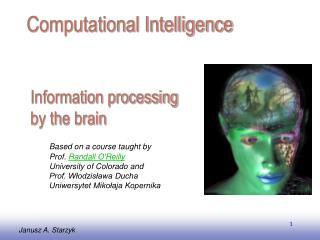 Information processing by the brain