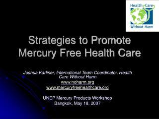 Strategies to Promote Mercury Free Health Care