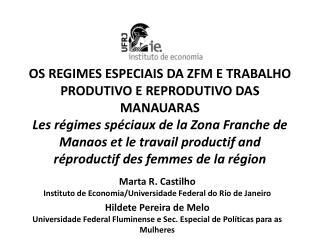 Marta R. Castilho Instituto de Economia/Universidade Federal do Rio de Janeiro