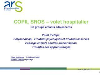 COPIL SROS – volet hospitalier G5 groupe enfants adolescents   Point d'étape: