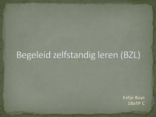 Begeleid zelfstandig leren (BZL)