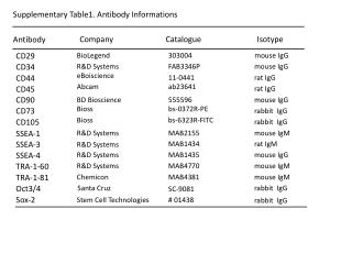 Supplementary Table1. Antibody Informations