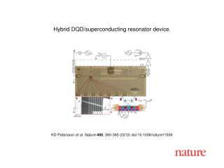 KD Petersson  et al. Nature 490 , 380-383 (2012) doi:10.1038/nature11559