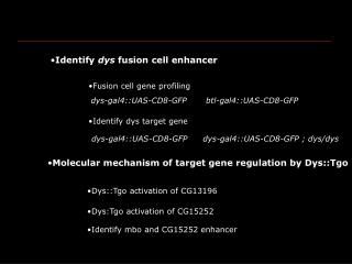 Fusion cell gene profiling
