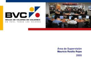 Área de Supervisión Mauricio Rosillo Rojas  2005