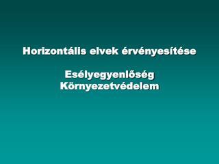 Horizontális elvek érvényesítése Esélyegyenlőség Környezetvédelem