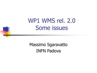 WP1 WMS rel. 2.0 Some issues