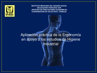 Aplicación práctica de la Ergonomía en apoyo a los estudios de Higiene Industrial