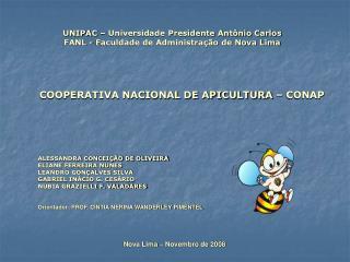 UNIPAC – Universidade Presidente Antônio Carlos FANL - Faculdade de Administração de Nova Lima