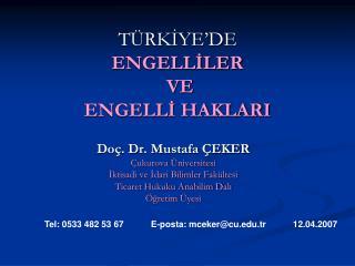 TÜRKİYE'DE  ENGELLİLER  VE ENGELLİ HAKLARI