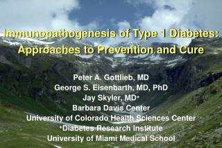 Immunopathogenesis of Type 1 Diabetes: Approaches to Prevention and Cure