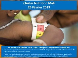 Cluster Nutrition Mali 26 F�vrier 2013