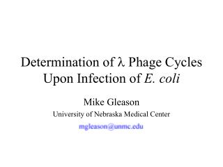 Determination of  l  Phage Cycles Upon Infection of  E. coli