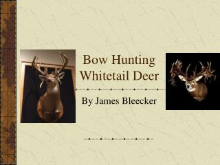 Bow Hunting  Whitetail Deer