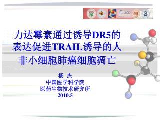 力达霉素通过诱导 DR5 的表达促进 TRAIL 诱导的人非小细胞肺癌细胞凋亡