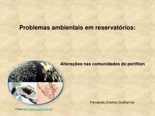Problemas ambientais em reservatórios :