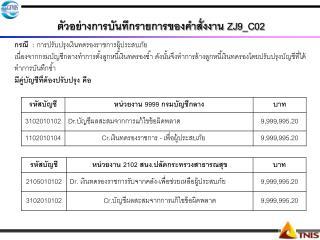 ตัวอย่างการบันทึกรายการของคำสั่งงาน ZJ9_C02