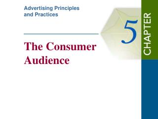 The Consumer  Audience