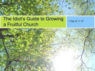The Idiot's Guide to Growing a Fruitful Church