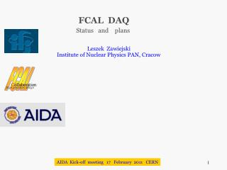FCAL  DAQ Status   and    plans