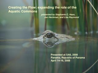 Creating the Flow: expanding the role of the  Aquatic Commons