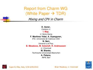 Report from Charm WG (White Paper   TDR )
