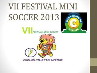 VII  FESTIVAL MINI SOCCER 2013