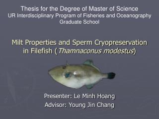 Milt Properties and Sperm Cryopreservation in Filefish ( Thamnaconus modestus )