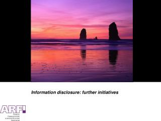 Information disclosure: further initiatives