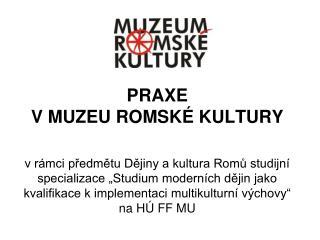 PRAXE VMUZEU ROMSKÉ KULTURY