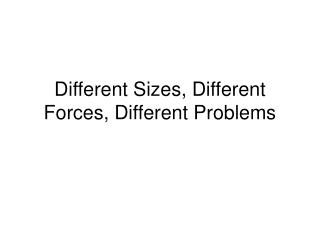 Different Sizes, Different Forces, Different Problems