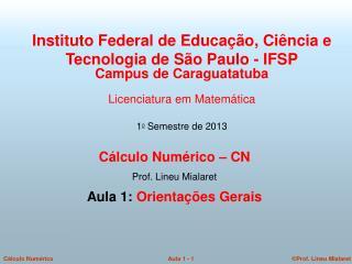 Cálculo Numérico – CN  Prof. Lineu Mialaret  Aula 1:  Orientações Gerais