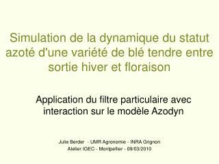 Application du filtre particulaire avec interaction sur le modèle Azodyn