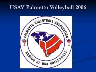 USAV Palmetto Volleyball 2006