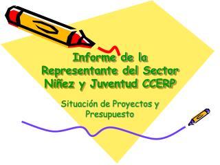Informe de la Representante del Sector Niñez y Juventud CCERP