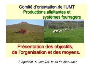 Comité d'orientation de l'UMT  Productions allaitantes et  systèmes fourragers