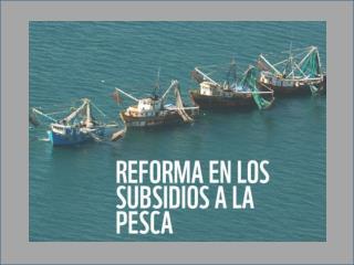 Diálogos para la reforma de los subsidios en México