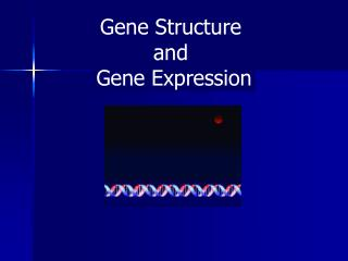 Gene Structure  and  Gene Expression