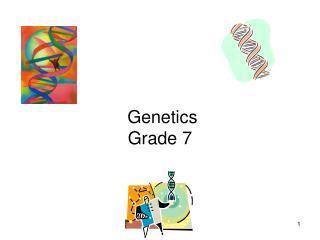 Genetics Grade 7