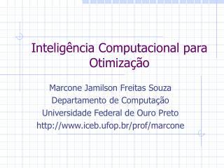 Inteligência Computacional para Otimização