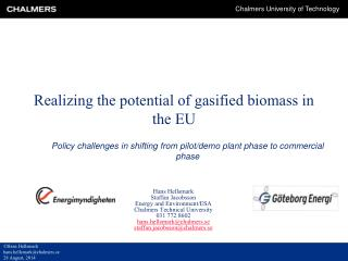 Realizing the potential of gasified biomass in the EU