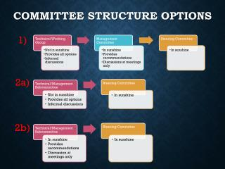 Committee Structure Options