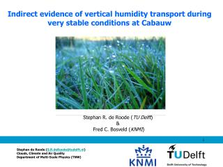 Indirect evidence of vertical humidity transport during very stable conditions at Cabauw