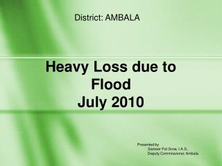 Heavy Loss due to  Flood July 2010