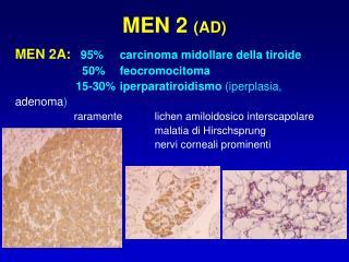 MEN 2  (AD)