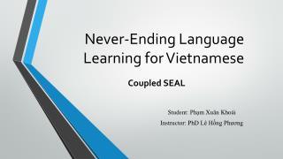 Never-Ending Language Learning for Vietnamese