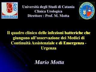 Mario Motta