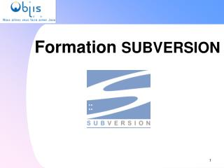 Formation  SUBVERSION
